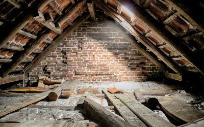 What is a Party Wall Surveyor?